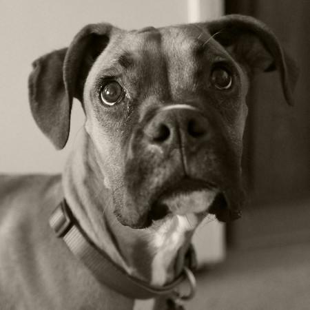 Tyson 5-9-2011